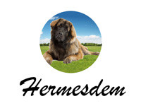 Hermesdem